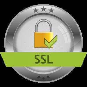 CNSS_SSL_services-300x300